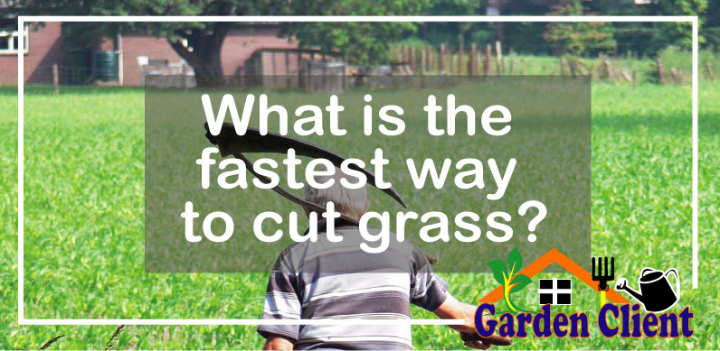 Read more about the article What is the fastest way to cut grass?